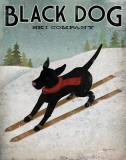 Black Dog Ski Poster von Ryan Fowler