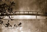 Callaway Garden Pond Poster di Danita Delimont