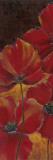 Midnight Poppy I Posters by Richard Henson
