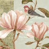 Magnolia Collage I Poster by Pamela Gladding