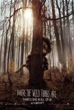 Til Huttetuenes land (2009) Plakat
