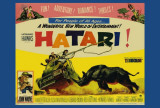 Hatari Poster