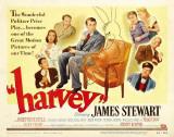 Harvey -  Style Print