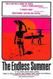 El verano sin fin Póster