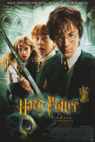 Harry Potter and the Chamber of Secrets - Brazilian Style Poster