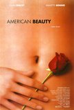 American Beauty Kunstdruck