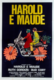Harold and Maude - Italian Style Posters