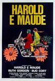 Harold y Maude (Joven chalado millonario seduce a vieja chiflada) Lámina