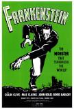 Frankenstein, Marry Shelly, anatomische weergave mannenfiguur Posters