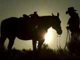 Cowboy With His Horse at Sunset, Ponderosa Ranch, Oregon, USA Fotografie-Druck von Josh Anon