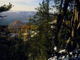 Bristlecone Pines Above Cedar Breaks at Sunset in Wintercedar Breaks National Monument, Utah, USA Photographic Print by Scott T. Smith
