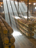 Shafts of Light in Barrel Room of Montevina Winery, Shenandoah Valley, California, USA Impressão em tela esticada por Janis Miglavs