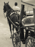 Horse Carriages at Pinto Wharf, Floriana, Valletta, Malta Reproduction photographique par Walter Bibikow