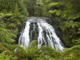 Owharoa Falls, Karangahake Gorge, Waikato, North Island, New Zealand Photographic Print by David Wall