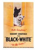 Black and White Scotch Impressão giclée premium
