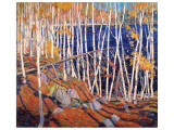 In the North Land Premium Giclée-tryk af Tom Thomson