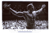 Arnold Schwarzenegger Posters