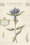 Le Jardin des Fleurs III Pôsters por Maria Mendez