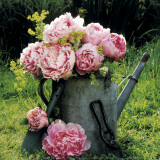 Watering Can And Peonies Plakater af James Guilliam