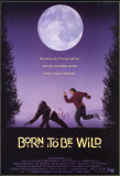 Born to be Wild Affiche originale