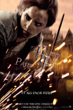 Harry Potter and the Deathly Hallows: Part II - Hermione Masterprint