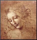 Cabeça de Mulher (La Scapigliata), c.1508 Impressão montada por  Leonardo da Vinci