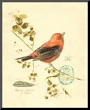 Gilded Songbird III Impressão montada por Chad Barrett