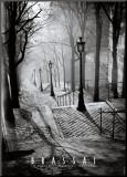 Les Escaliers de Montmartre, Paris Affiche montée sur bois par  Brassaï