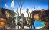 Spejlbillede af elefanter  Monteret tryk af Salvador Dalí