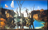 Reflections of Elephants Mounted Print by Salvador Dalí