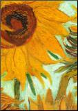 Solrosor, ca 1888 Print på trä av Vincent van Gogh