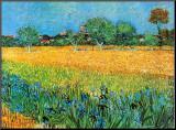 Vista de Arles con lirios Lámina montada en tabla por Vincent van Gogh
