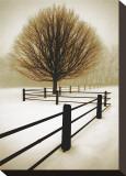 Solitude Toile tendue sur châssis par David Winston