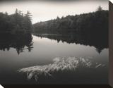 Misty Morning Impressão em tela esticada por Andrew Ren