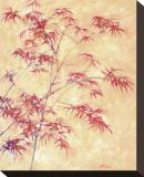 Talking to a Maple Tree Impressão em tela esticada por  Telander