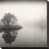 Tree, Study, no. 9 Stretched Canvas Print by Andrew Ren