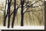 Rêves passés Toile tendue sur châssis par David Winston