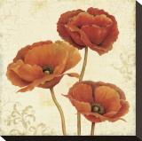 Poppy Boquet II