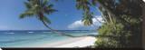Anse Severe, Seychelles Trykk på strukket lerret av David Noton