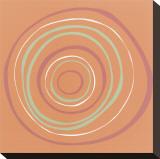 Ozone (Séri) Toile tendue sur châssis par Denise Duplock