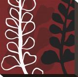 Maidenhair on Red Ground Toile tendue sur châssis par Denise Duplock