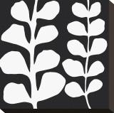 Maidenhair (white on black) Toile tendue sur châssis par Denise Duplock