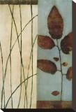 Quiet Leaves Sträckt kanvastryck av Dominique Gaudin