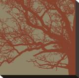 Cinnamon Tree III Impressão em tela esticada por Erin Clark