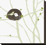 Feathers and Twigs Bedruckte aufgespannte Leinwand von Erin Clark