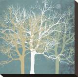 Tranquil Trees Opspændt lærredstryk af Erin Clark