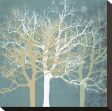 Tranquil Trees Stretched Canvas Print by Erin Clark