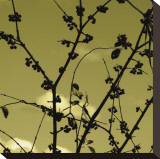 Autumn Branch (sepia) (detail) Stretched Canvas Print by Jenny Kraft