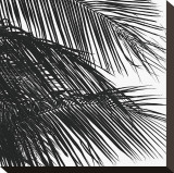 Palms, no. 4 (detail) Stretched Canvas Print by Jamie Kingham