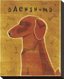 Dachshund (red) Opspændt lærredstryk af John Golden